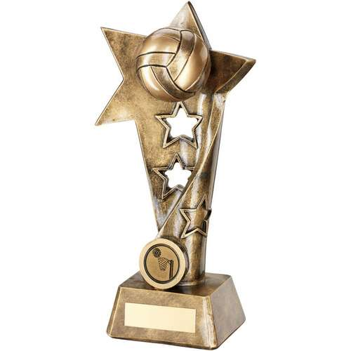 Resin Netball Award 260mm