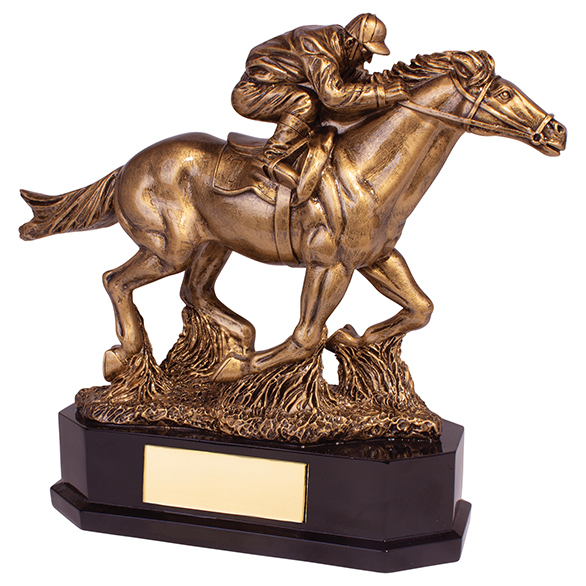 Aintree Deluxe Equestrian Award 220mm